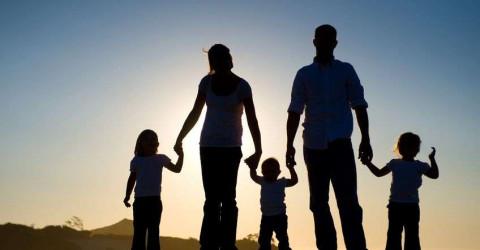 Дополнительная мера государственной поддержки семей с детьми