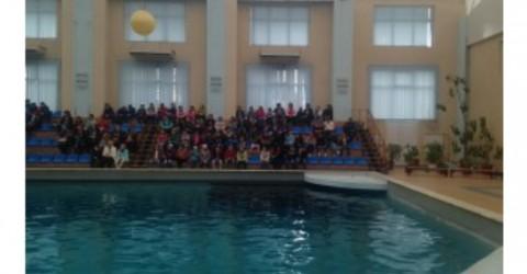 Поездка в дельфинарий в г. Кисловодск